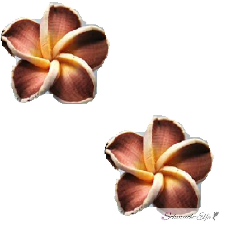 1 Paar FIMO Blüten Ohrstecker weiß mocca gelb X...
